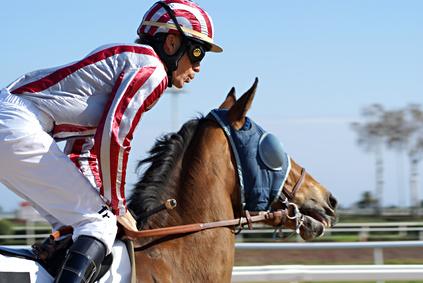 Jockey au galop