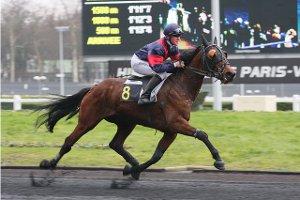 La présence du driver derrière et non pas sur le cheval favorise la vitesse du cheval en trot.